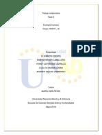 Trabajo colaborativo fase 2 consolidado (1).docx