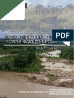 mineria madre dedios.pdf