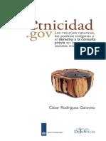 Garavito etnicidad.gov.pdf