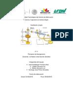 P. Destilacion