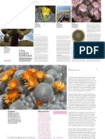 2505-cactus.pdf