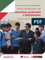 Asesoría Gestión-Orientaciones y Protocolos.pdf
