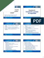 CISSP Dominio6