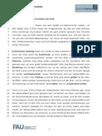 Flensburg-Hörtext.pdf