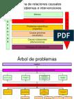 Abasto Social de Leche - Arboles de Problemas y Objetivos