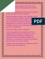 aspectos positivos y negativos del medio ambiente II BASICO.pdf