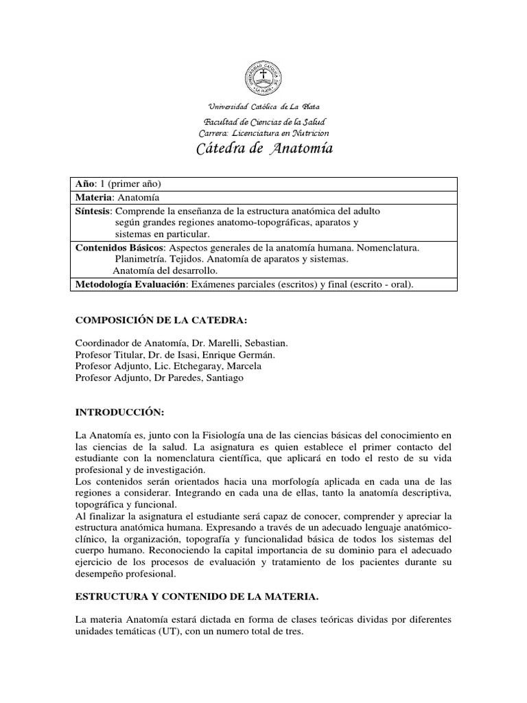 Increíble Maestría Anatomía Motivo - Anatomía de Las Imágenesdel ...