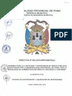 DIRECTIVA 003 MPP.pdf