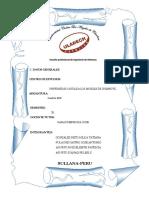 TAREA -02-PULACHE CASTRO_ERP.pdf