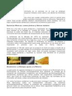 Biolixiviaci+¦n.doc