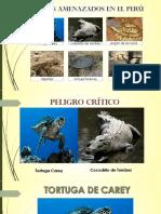 Ecologia Oficial-REPTILES (1)