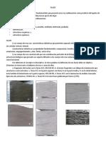 458128024.clase 10 facies.pdf