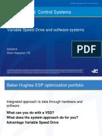 Advantage VSD-Customer Presentation