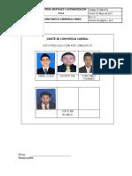R-HSE-010 VOTACION COMITE DE CONVIVENCIA LABORAL.docx