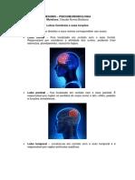 08 Resumo - lobos cerebrais, estruturas e funçoes.pdf