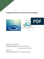 Trabajo Estructura Moleculat H2O