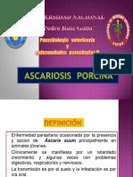ascariosis porcina