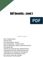 290958923 SAP Security Level 1