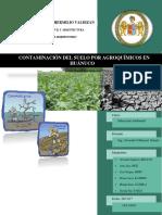 EDUCACION-AMBIENTAL-informe-FINAL-2017.docx