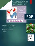 Síndrome Anticolinérgico (Alcaloides Tropánicos)