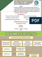 Diapositivas de Proyecto de PIS