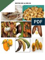 Alimentos de La Selva