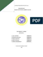 Kontraksi Otot Polos Lambung Katak
