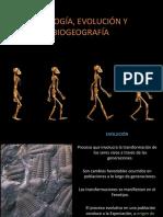 Clase 3 Unidad 1 Zoologia y Evolucion.pdf