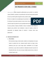 Proceso de Prodcución del Cuero.pdf