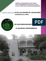 LQVB FELAC 2015.pptx