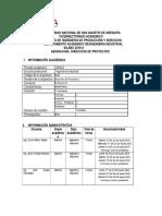Silabo de Direccion de Proyectos 11.01.2018