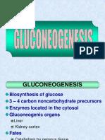 5.2. Glukoneogenesis Dan Metabolisme Glikogen