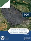 Informe post incendio forestal Carcaixent 16/06/2016