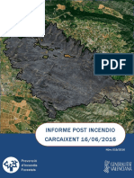 Informe post incendio forestal Carcaixent 16/06/2016