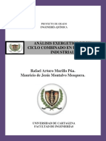 ANÁLISIS EXERGETICO DE UN CICLO COMBINADO EN UNA PLANTA INDUSTRIAL.pdf