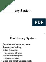 urinarysystem-160122220350