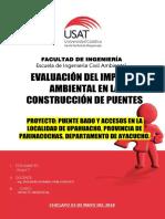 ESTUDIO DE IMPACTO AMBIENTAL PUENTES.pdf