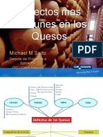 Defectos en Quesos-Chri Hansen-nslab