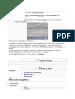 Calicot.docx