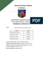 Informe 2. DBO