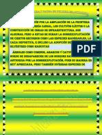Especies de Flora y Fauna en Peligro en Antioquia