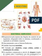 55db2e114fd312c783e717daacf2f4d98f4b41eb0ca04 Sistema-nervoso-8 Ciencias Prof-maria Emilia Jaque Martins