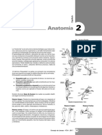 Anatomía Canina.pdf