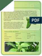 estevia.pdf