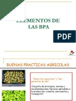 005 - D.T - Elementos de Las BPA
