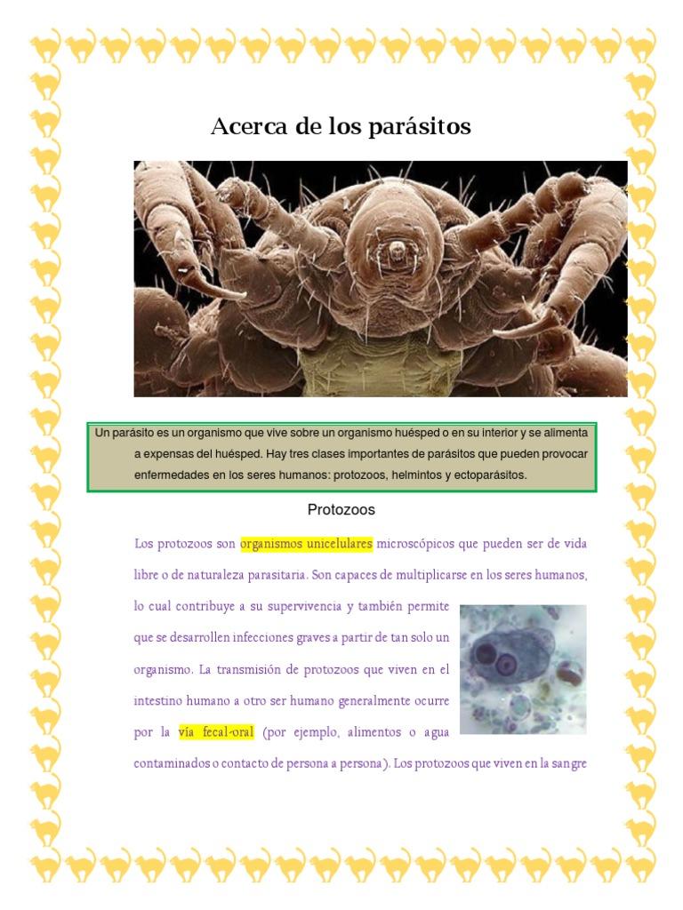 prueba microscópica de parásitos unicelulares