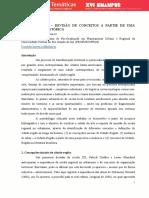 299160012-Resenha-Cidades-Do-Amanha.pdf