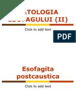 Patologia Esofagului2 Br