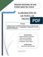 ELABORACION DE UN PROYECTO.docx