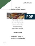 Proyecto de Inversion Graciela Perez Frausto